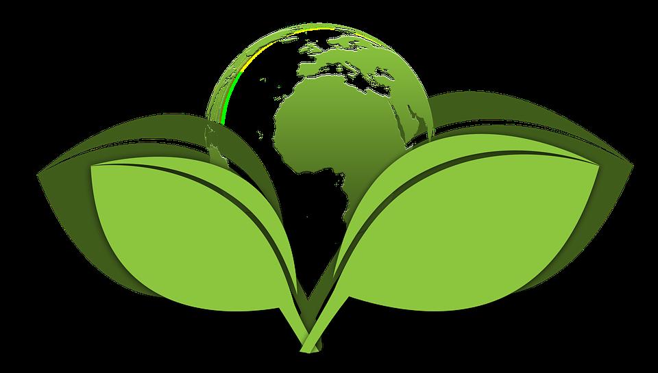 5 Tipps - Wie Sie einen umweltfreundlichen Kamin finden